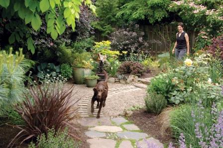 backyard landscaping dog friendly