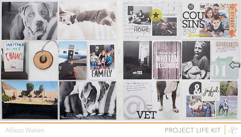 Allison Waken - Project Life - Studio Calico