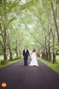 wedding hair york pa wedding hair york pa ...