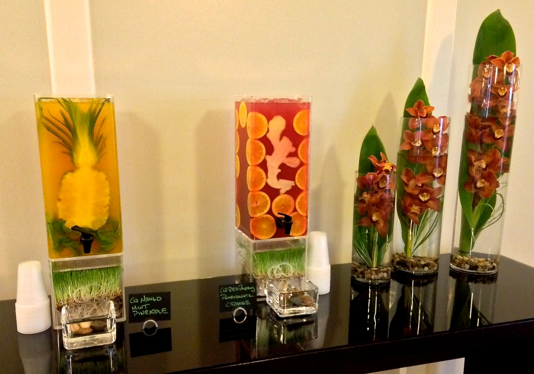 CQ Infused Waters Infused Iced Teas Juice Infusions and