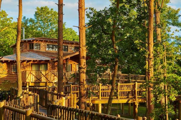 best family sofas uk lamborghini sofa center parcs treehouses, elveden forest - review | london ...