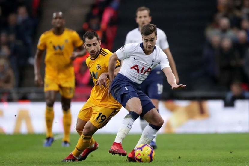 Image result for harry winks wolves