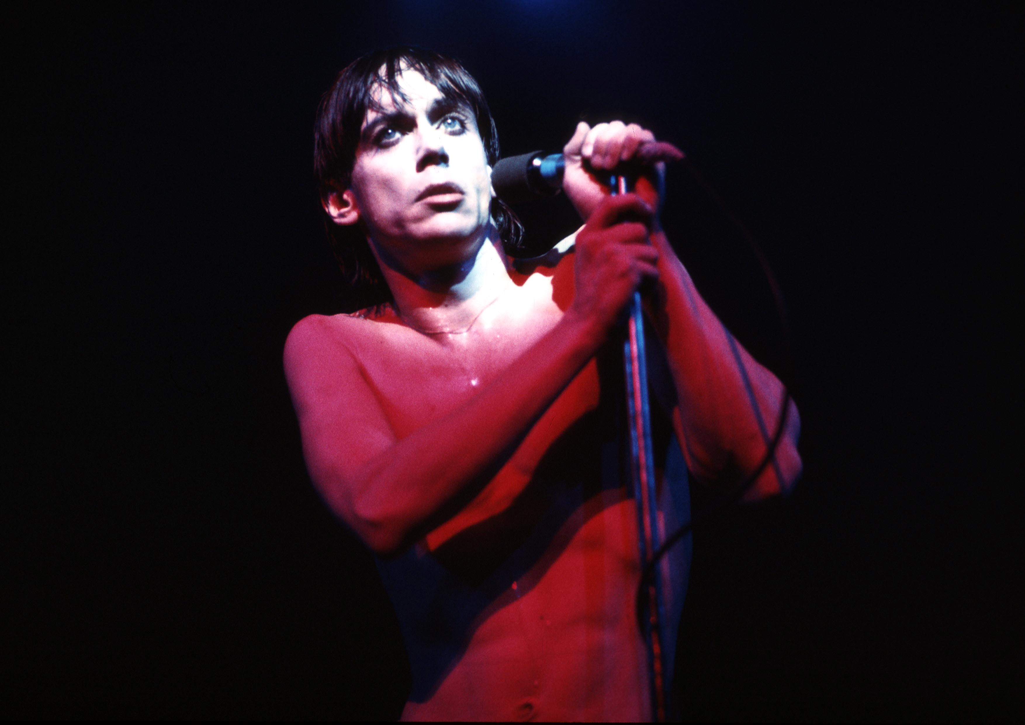 Iggy Pop Albums From Worst To Best  Stereogum