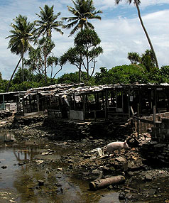 Pollution in Tuvalu