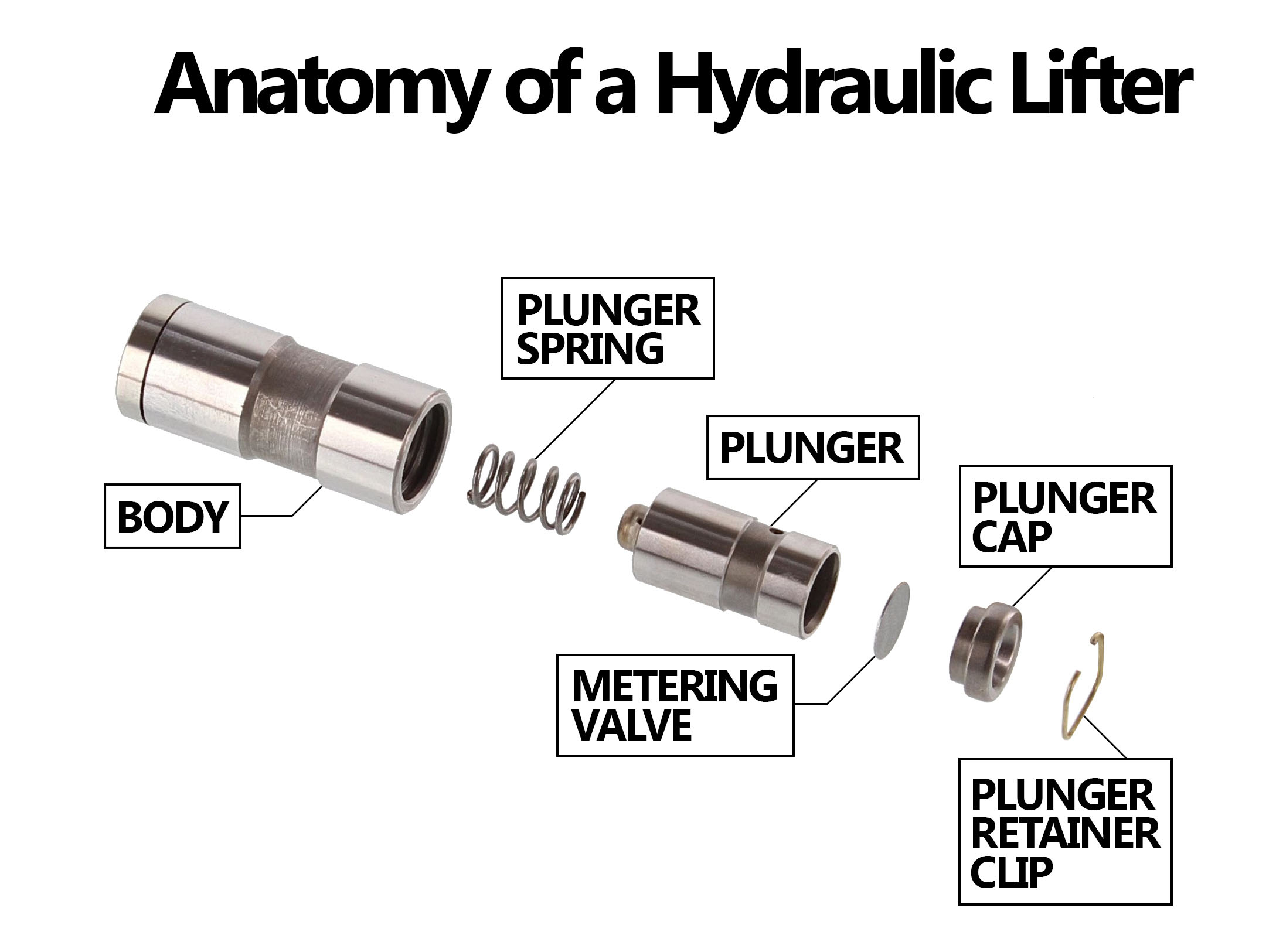 Hydraulic vs. Solid Lifters