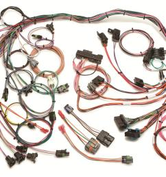 painless performance fuel injection harnesses 60102 free shipping on orders over 99 at summit racing [ 1600 x 1064 Pixel ]