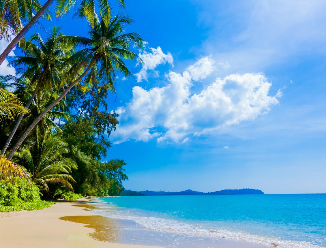 Hd Wallpaper Sunny Day On The Beach Hd