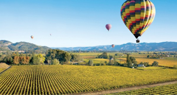 Image result for Napa Valley in California