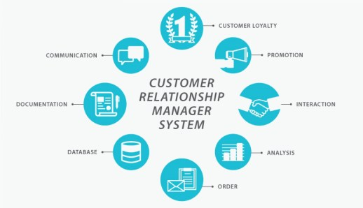 7 Specific Adaptation Of Customer Centricity Management