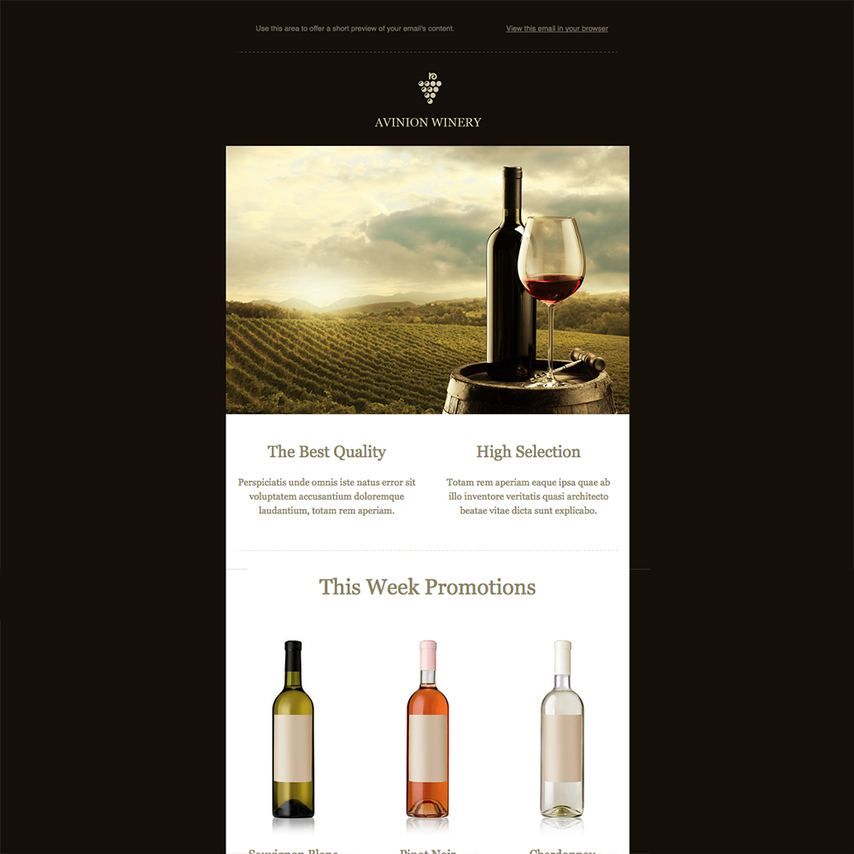 Winery Free Responsive Email Newsletter Template