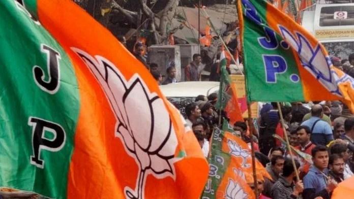 Representational image of BJP flags   ANI