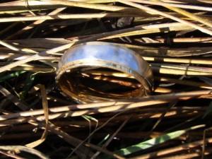 Nov. Ring Search 1