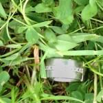 Franks Ring