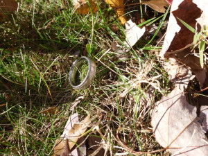 WEDDING BAND FOUND 111413 (2)