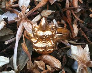 Ring featuring Lakshmi Hindu goddess of wealth