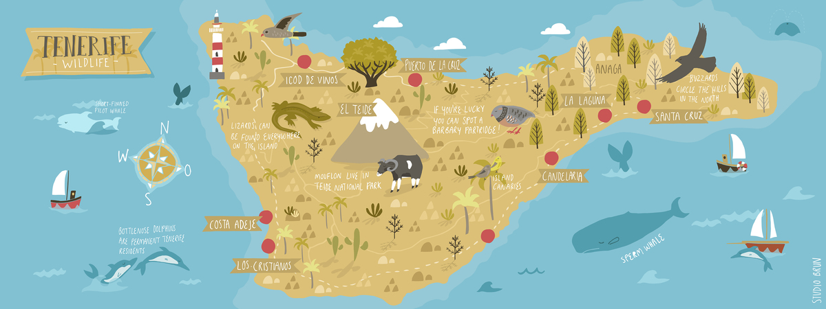 Image result for tenerife map graphic design cute