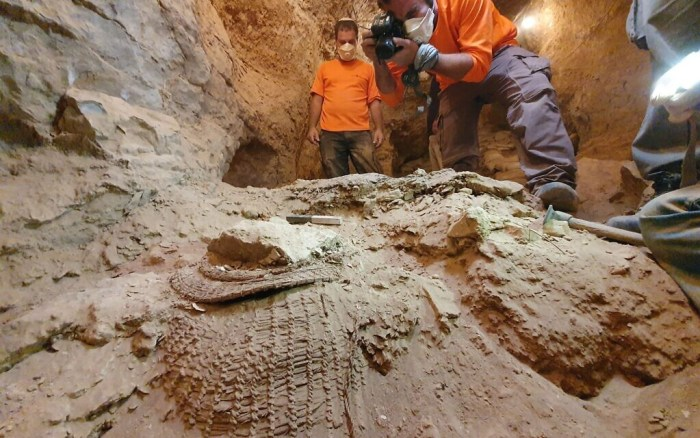 The basket as found in Muraba'at Cave. (Yoli Schwartz, Israel Antiquities Authority)