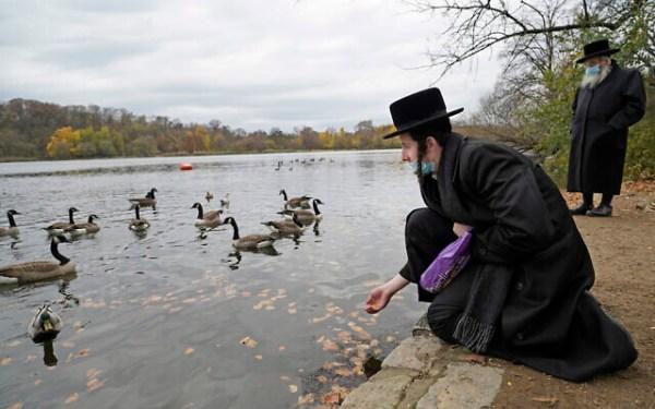 Archivo: Un hombre haredi ofrece comida a gansos y un ánade real mientras las aves acuáticas nadan en Prospect Lake en Prospect Park, el domingo 15 de noviembre de 2020, en el distrito de Brooklyn de Nueva York.(Foto AP / Kathy Willens)