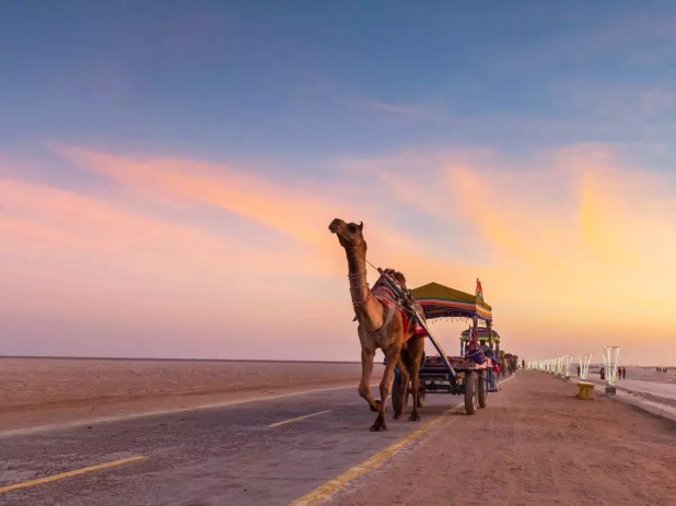 Planning for a Diwali trip? Tent City of Kutch will be reopening for visitors from November 12