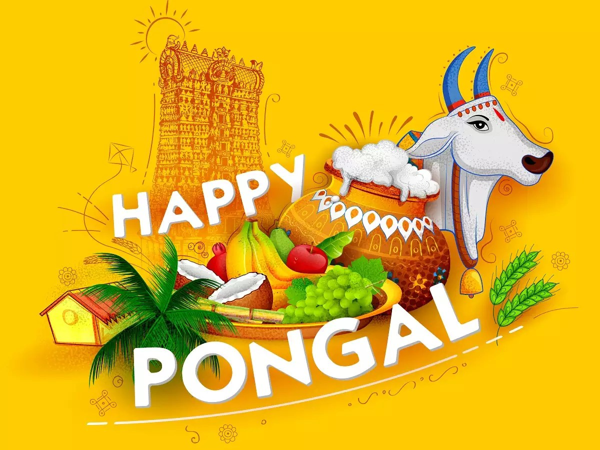 When Is Pongal 2019 How It Is Celebrated Date Time