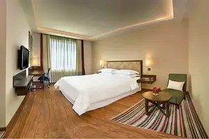 Hotels Near Delhi Airport Luxury Hotels Near Delhi Airport