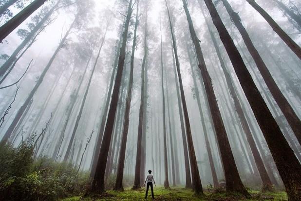 homem_natureza10
