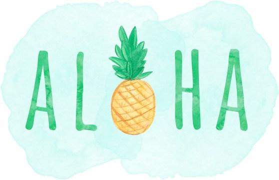 Afbeeldingsresultaat voor aloha