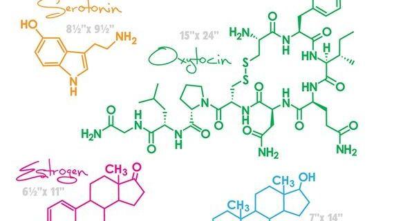Resultado de imagen para quimica amor