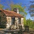 Cabin or cottage reanimators