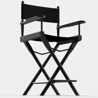 3D Other directors chair producer
