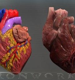 heart diagram [ 1422 x 800 Pixel ]