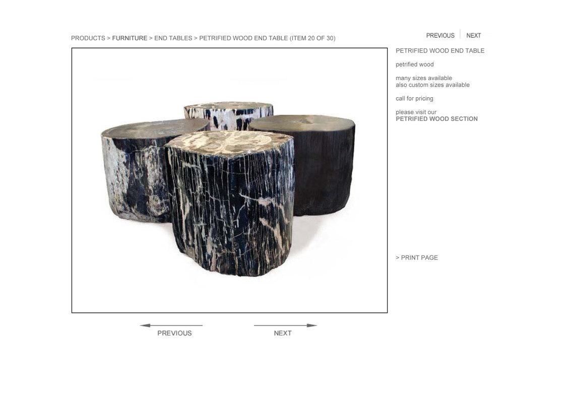 Hudson Petrified Wood End Table 3d Model