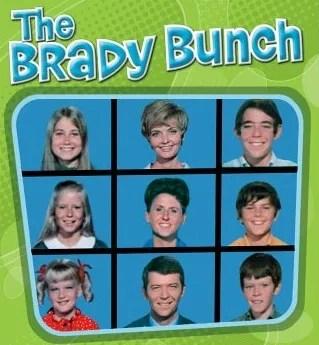 the brady bunch series