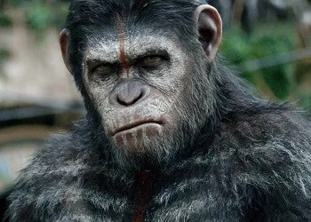 Planet Of The Apes Reboot Series Apes Characters Tv Tropes