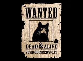 schrödinger s cat useful