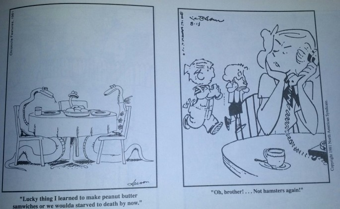 Newspaper accidentally swaps captions for The Far Side and