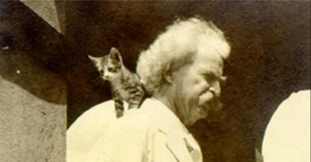 Funny Quotes Mark Twain