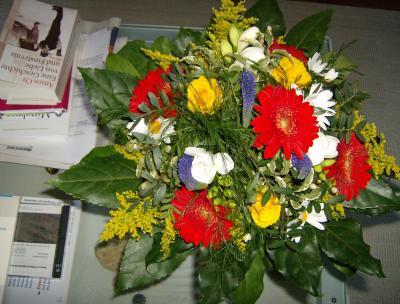 Heikos-Blumen-1-