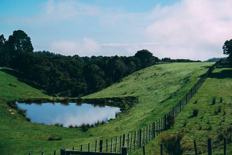 Reiseziele 2017 Neuseeland 4