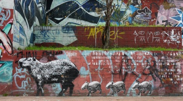 Streetart Bogota Crisp