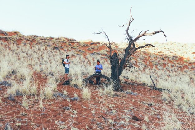 GONDWANA NAMIB DUNE STAR CAMP (14 von 17)