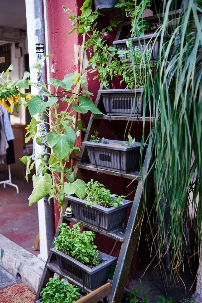 Singapore Haji Lane Green