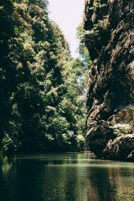 Thalen Bay Kayak Tour