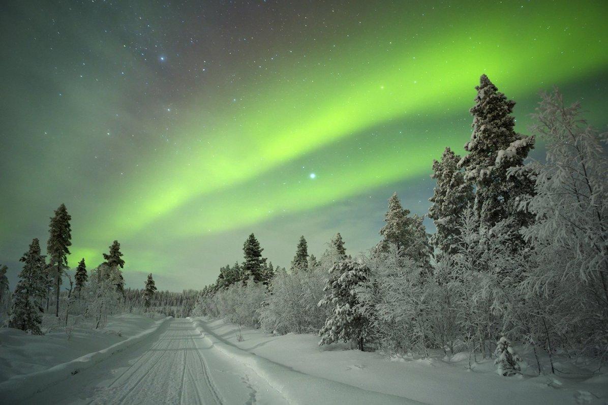 Copyright: Shutterstock/Sara Winter