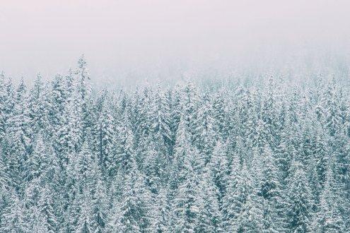Jim Drive Winter