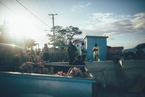 Conch Bahamas