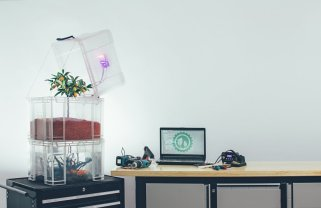 smart urban pioneers: plants & machines