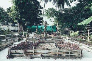 Spice Garden Niyama