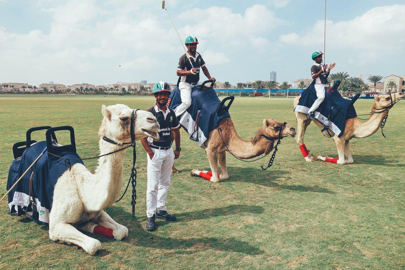 Dubai Special: Kultur erleben in der Wüste - uberding - dein ...