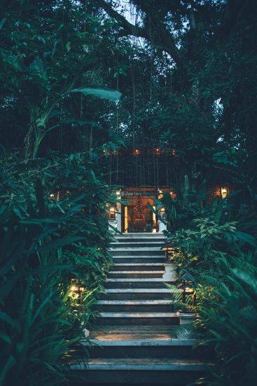 Mae Hong Son Fern Resort Mango Baum